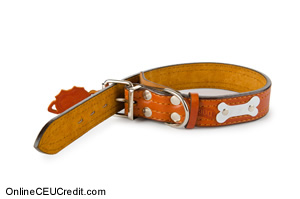 dog collar Strategies for Battered Women mft CEU
