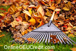 raking leaves Coping with Cancer Interventions counselor CEU course