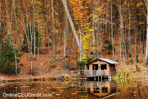 Fantasy Situations Stump Cabin Stream Enhancing Your Therapy with Gestalt counselor CEU course